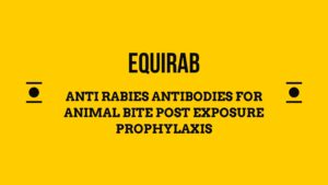 Equirab anti rabies equine antibody for post exposure prophylaxis